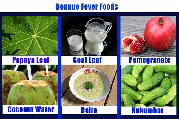 Dengue Mein Kya Khana Chahiye: डेंगू का उपचार, Dengue in Hindi