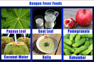 What to Eat in Dengue: Dengue Treatment Foods, How to Prevent Dengue