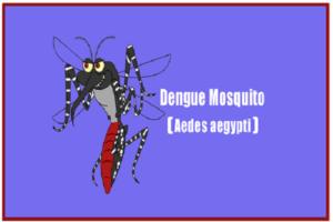 Dengue Platelet Count