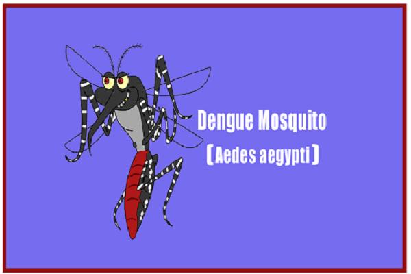 Dengue Symptoms in Hindi: डेंगू के लक्षण, Dengue Fever in Hindi