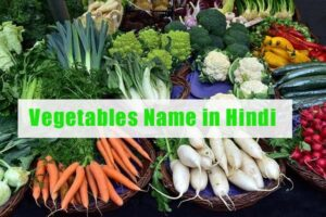 Vegetables Name in Hindi and English with Pictures